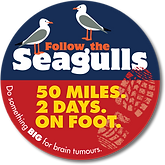 Follow the Seagulls Isle of Wight logo
