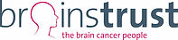 NEW 2013 brainstrust logo.jpg