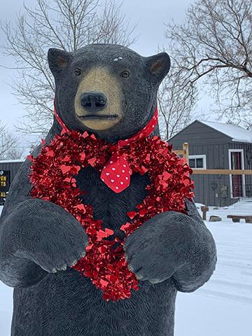 Corneilius the Bear 7&46 Shop's Mascot