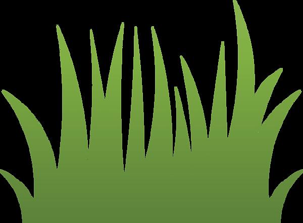 grass-medium.png