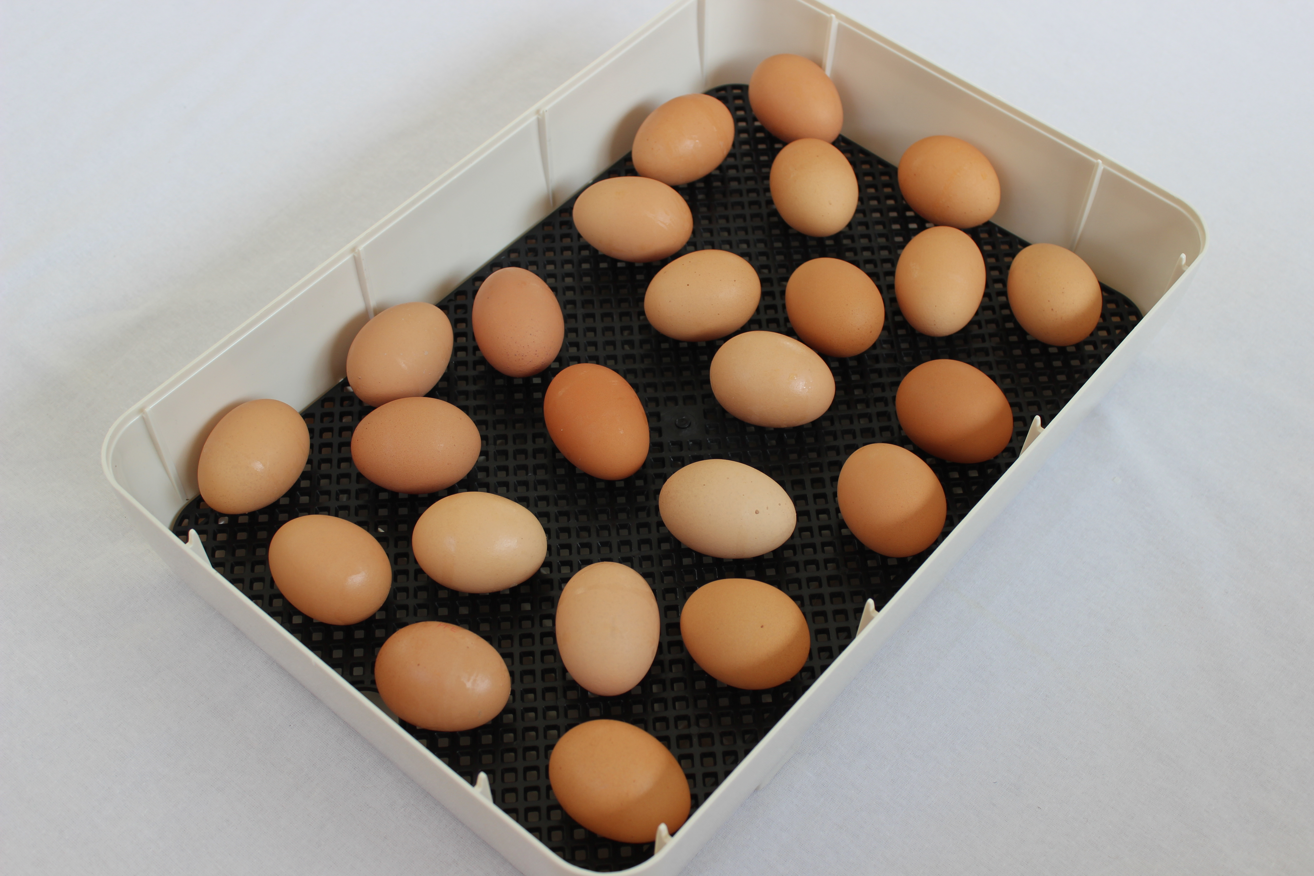 Spacious egg hatching tray