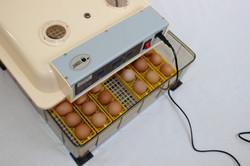 Janoel Model 48 Egg Incubator