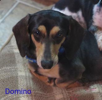 Domino_2_edited.jpg