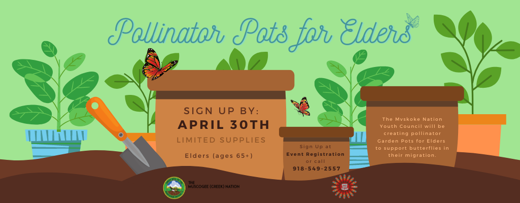 Pollinator Pots for Elders