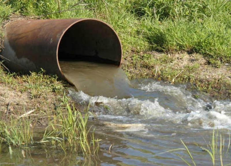 Substâncias poluentes lançadas no meio ambiente sem o devido controle causam danos
