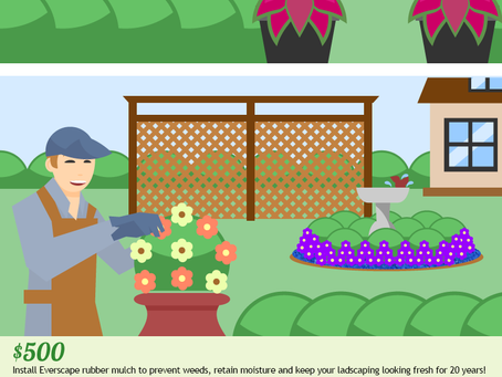 Quick Gardening Tips