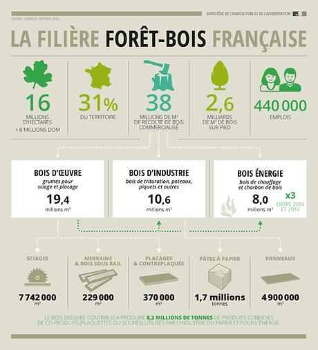 Filière forêt bois chiffres clés