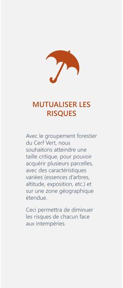 Cerf Vert Participer groupement forestier développement biodiversité