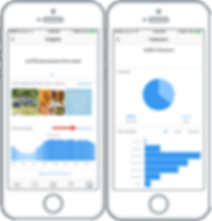 Instagram-Insights-Followers.png-900x469