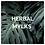 Thumbnail: HERBAL MYLKS (PACK OF 3)