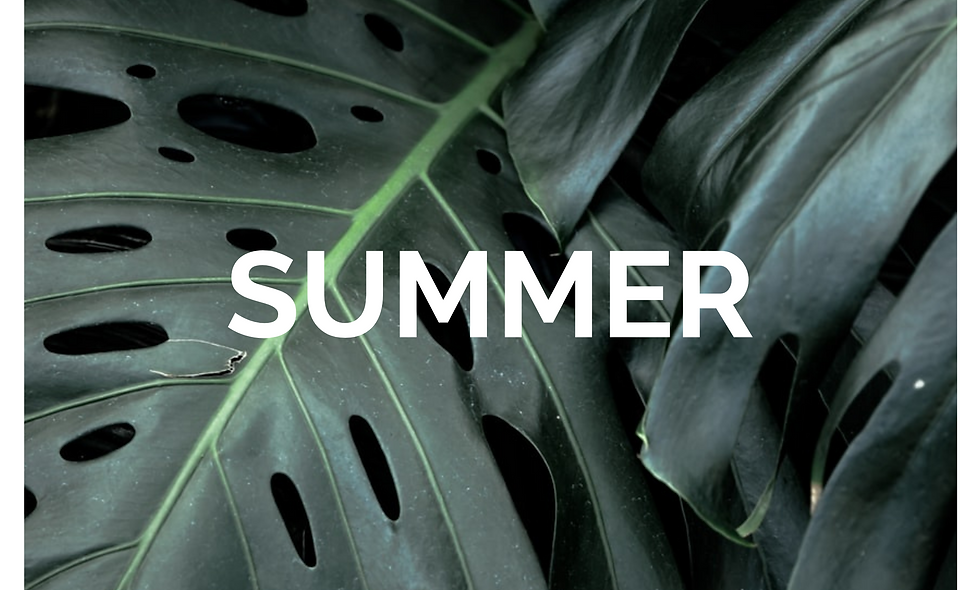 SUMMER (YANG) CLEANSE - NEW