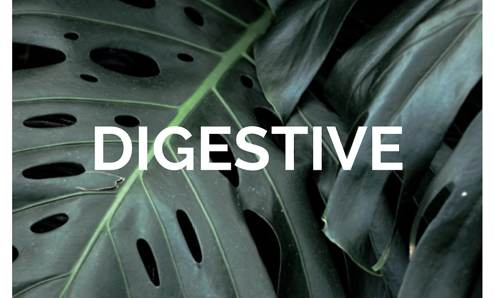 DIGESTIVE CLEANSE PROGRAM