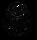 Logo V1 Noir