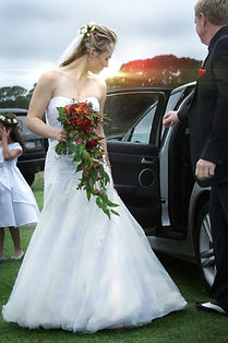 Wedding photos waihau bay