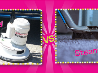 Differences between Steam & Dry Carpet Cleaning
