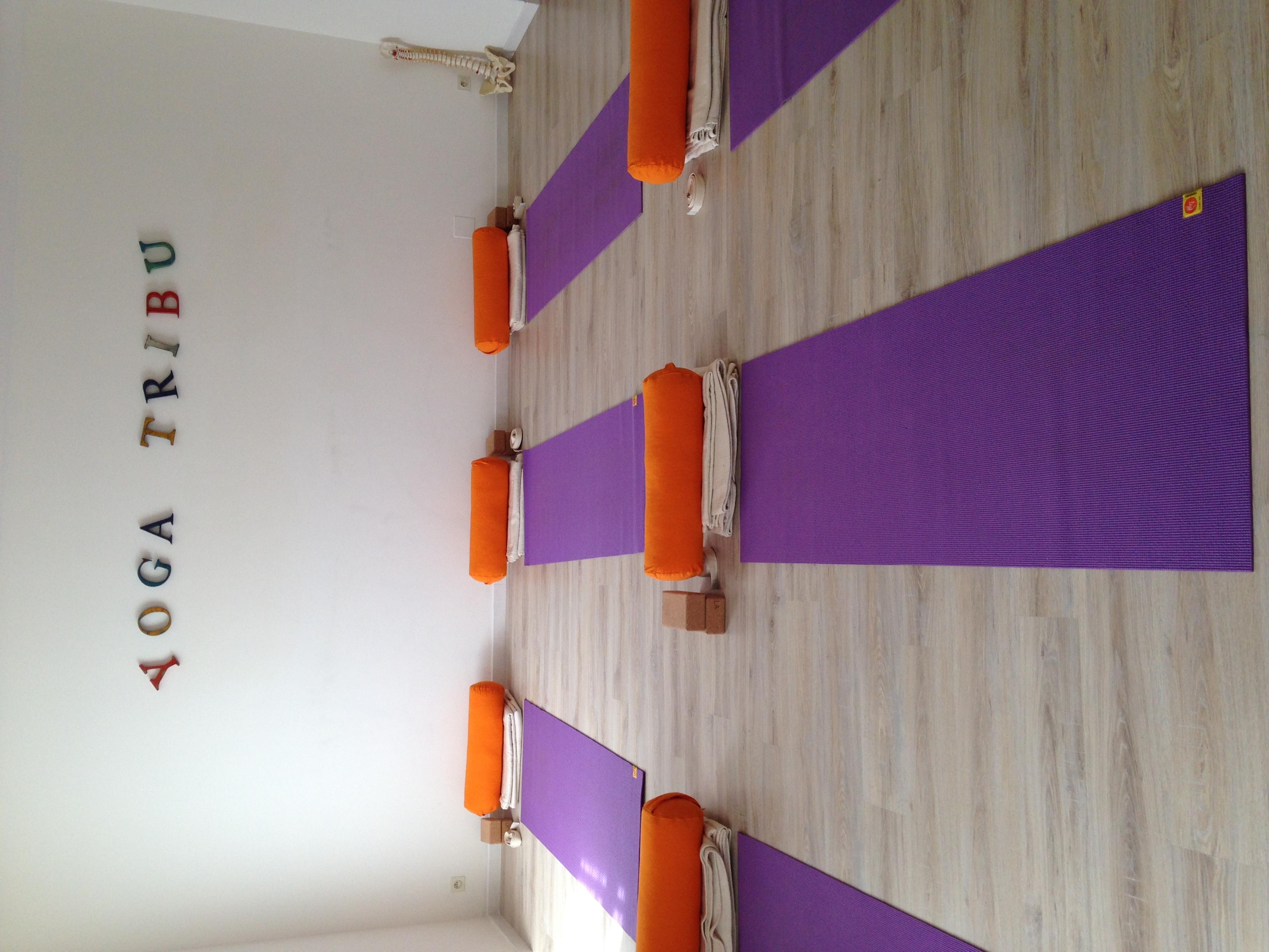 Yoga Tribu