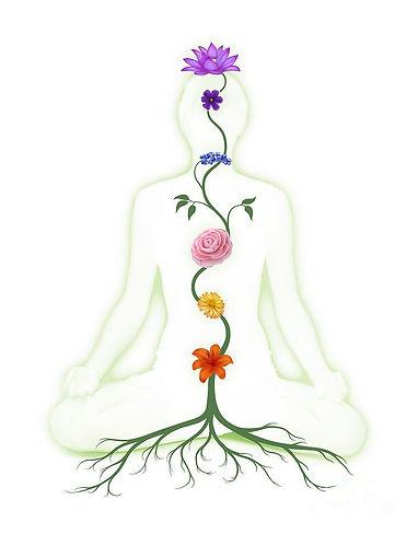 chakra-petals.jpg