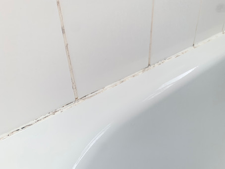 Cleaning Bathroom Mould