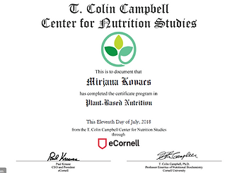 eCornell_certificate.PNG