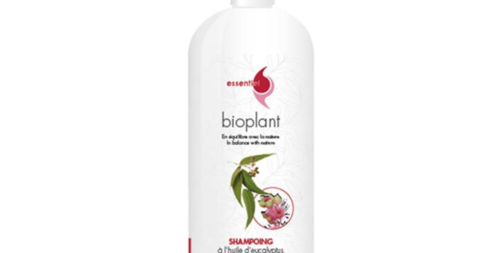 Shampoing à l'huile d'Eucalyptus - Bioplant
