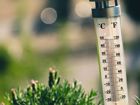 Let's Grow a Garden! Part 1: Temperature, a key factor for growing our food