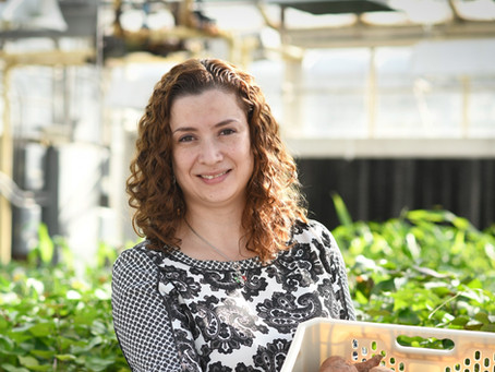 Meet Dr. Lina Quesada, Plant Pathology Associate Professor