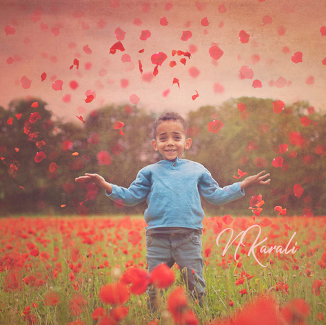 Dream_poppies.jpg