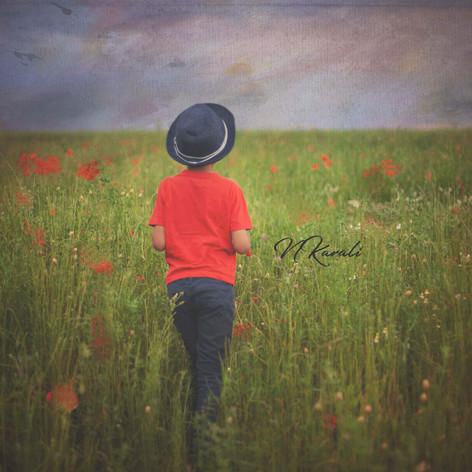 Poppiesimpressionisticportrait.jpg
