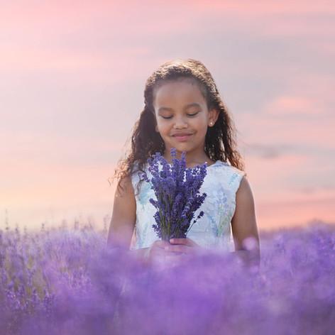 Lavender_photo_sessions.JPG