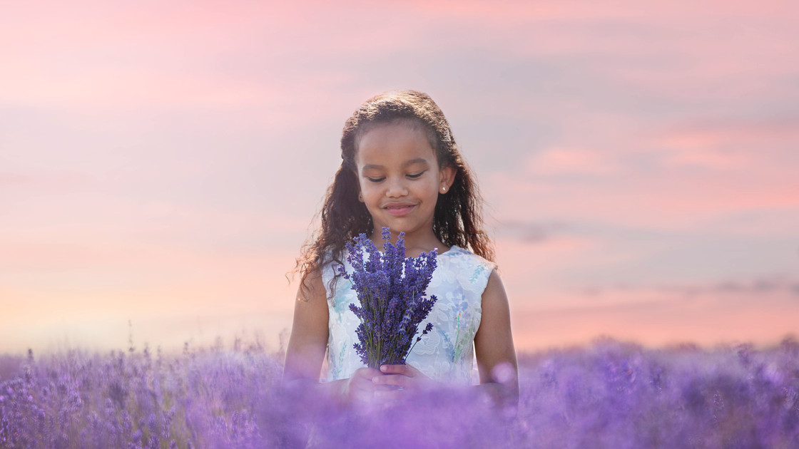 Lavender_photo_sessions