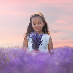 Lavender_photo_sessions.JPG