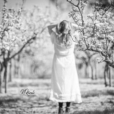 blossom_photography_worcester.jpg