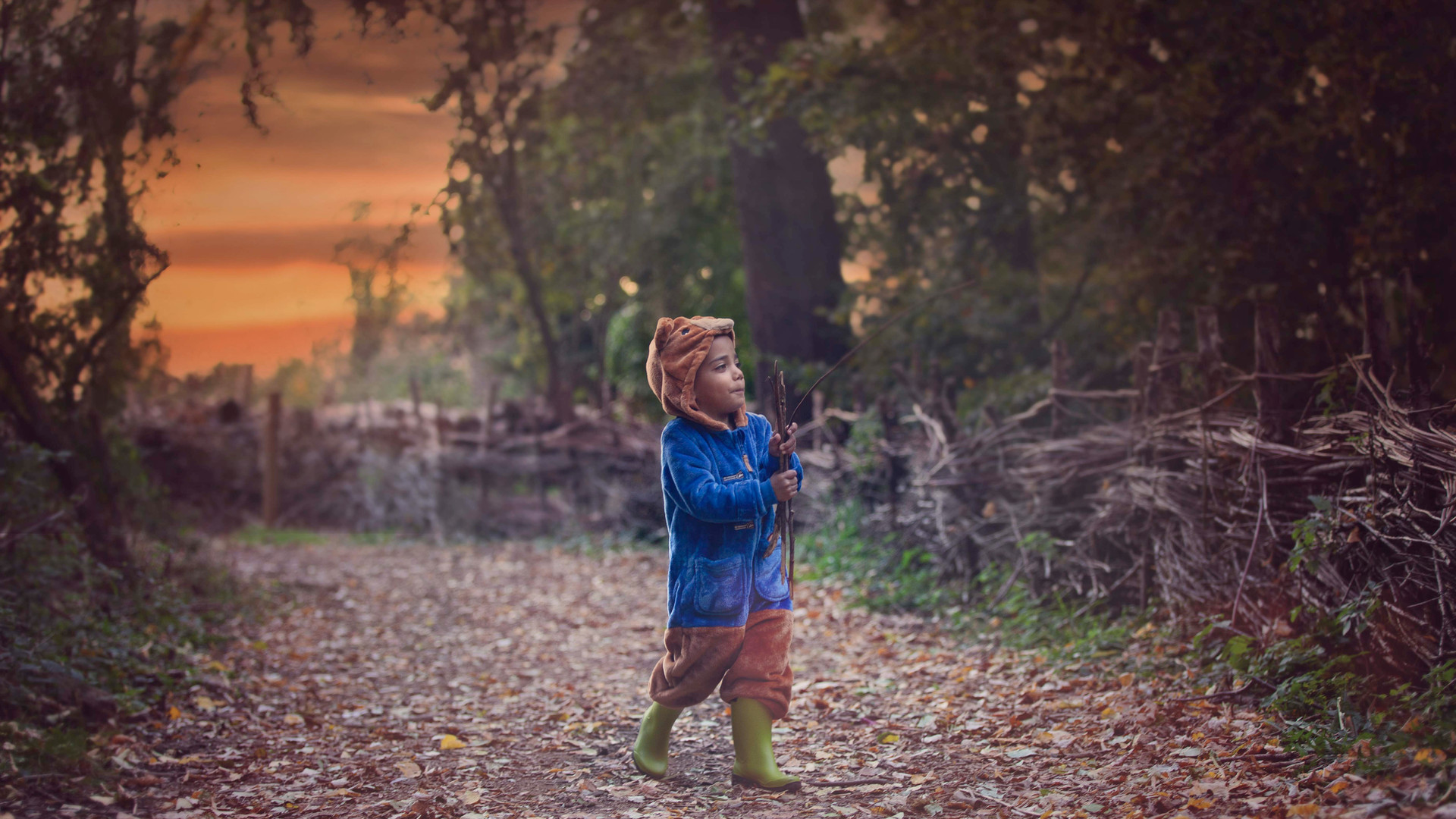 woodlight_photography.jpg