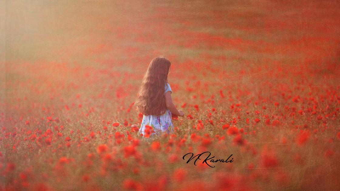 poppies_natalia_karali.jpg