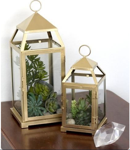 DIY Lantern with succulents on a table top