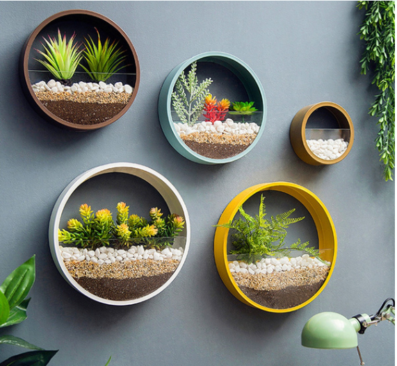 Plant air canisters on a wall with succulents inside