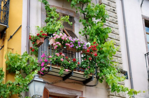 Balcony covered in flowers and a garden