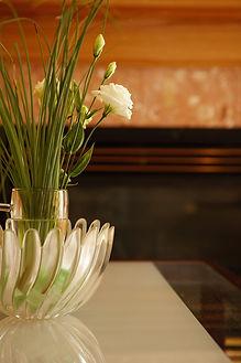 Interior Plant Care