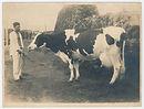 サゴタニ牛乳アーカイブ