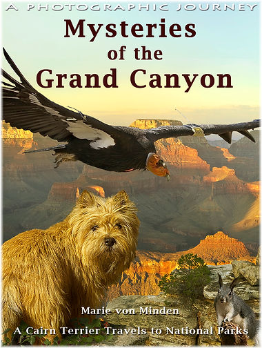 Mysteries of the Grand Canyon book kids