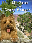 My Paws at the Grand Canyon.JPG