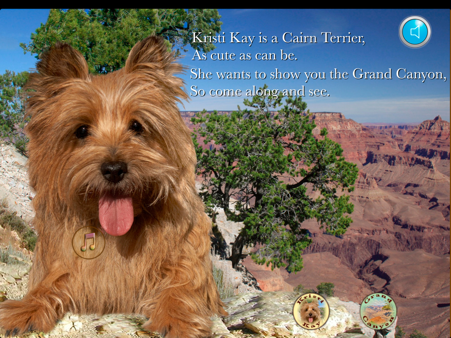 A Cairn Terrier travel to Grand Canyon