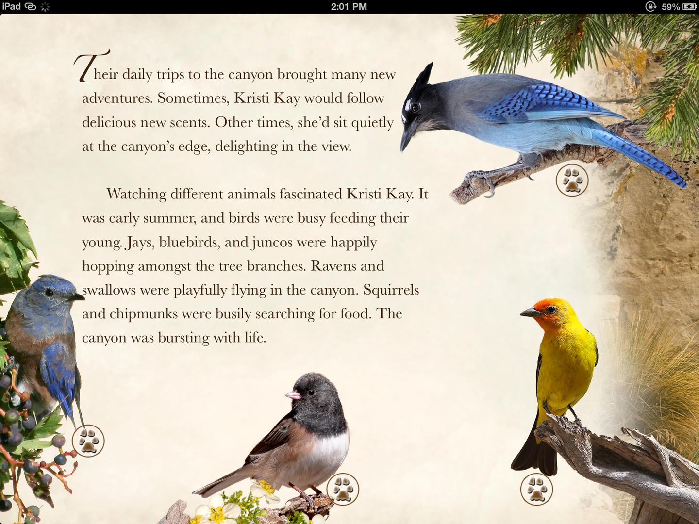 photobirds.PNG