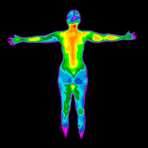 Cancer and the Healing Power of our Own Body