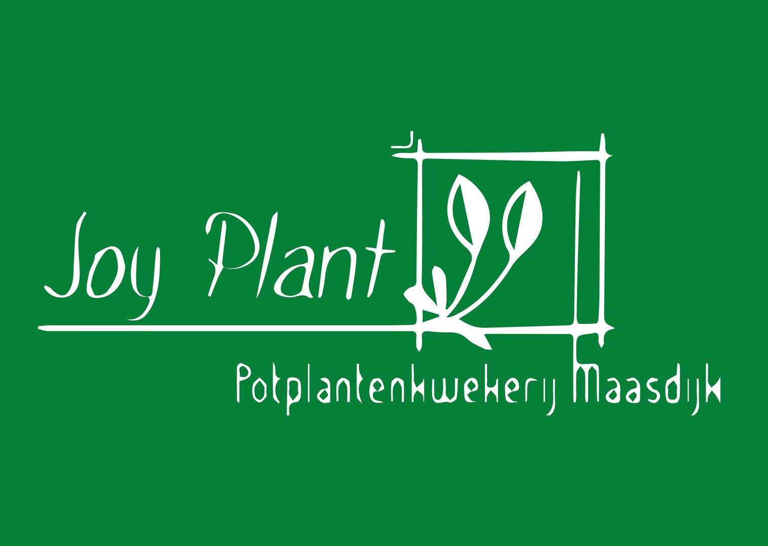 Decorum_witgroen_Joy plant.png