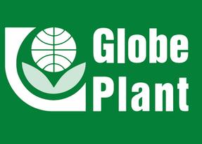 Decorum_witgroen_Globe plant.png