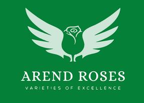 Decorum_witgroen_Arend roses.png