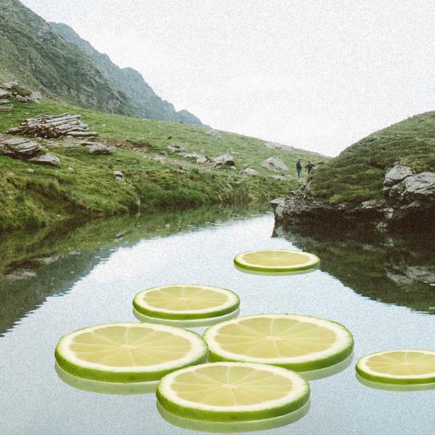 'Refresh'