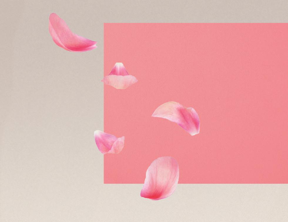 bask roses.jpg