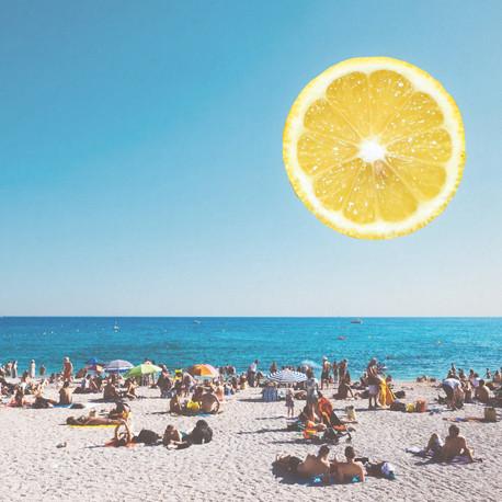 Lemon sunshine.jpg